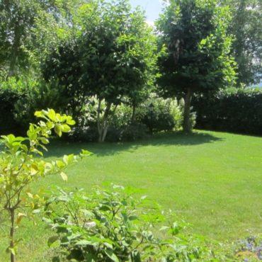 Elena cerca casa con giardino privato.